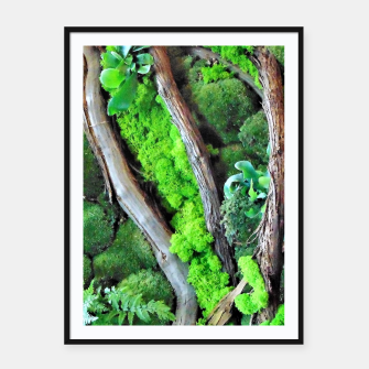Miniatur picture of moss Plakaty w ramie , Live Heroes