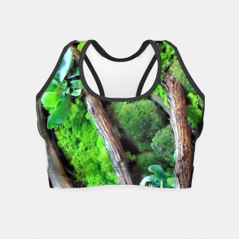 Thumbnail image of picture of moss Crop Top, Live Heroes