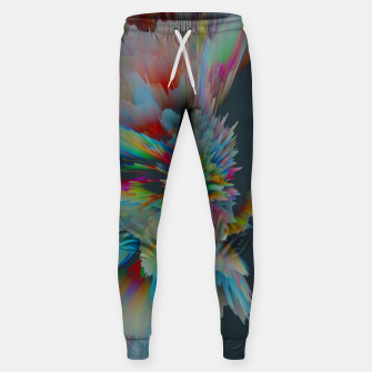 Thumbnail image of 064 Sweatpants, Live Heroes