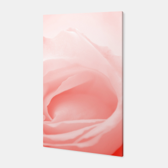 Thumbnail image of Coral Rose Close-up Canvas, Live Heroes