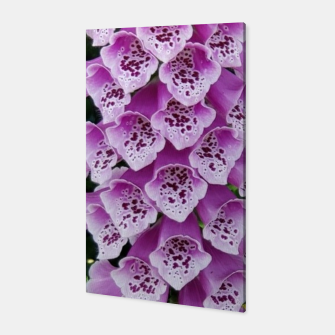 Thumbnail image of Lavender Flower Canvas, Live Heroes