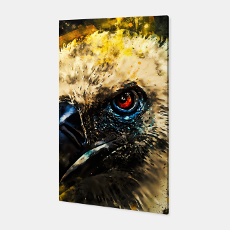 Thumbnail image of face of a vulture wsstd Canvas, Live Heroes