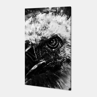 Thumbnail image of face of a vulture wsbw Canvas, Live Heroes