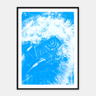 Thumbnail image of face of a vulture wswb Framed poster, Live Heroes