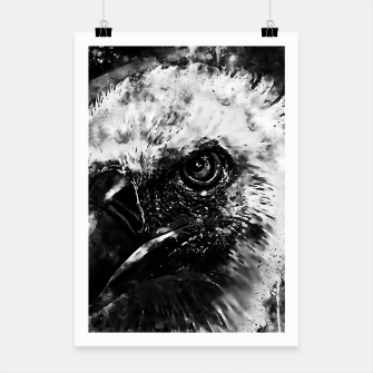 Thumbnail image of face of a vulture wsbw Poster, Live Heroes