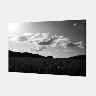 Thumbnail image of meadow and clouds bw Canvas, Live Heroes