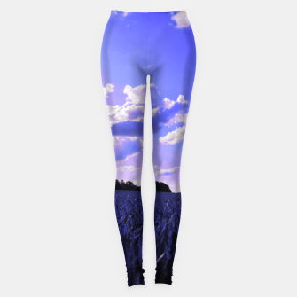meadow and clouds db Leggings thumbnail image