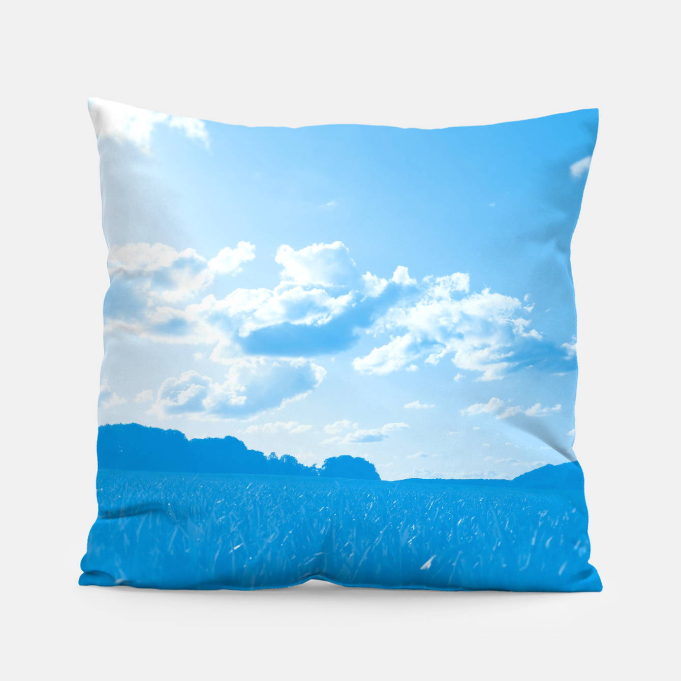 Image de meadow and clouds wb Pillow - Live Heroes