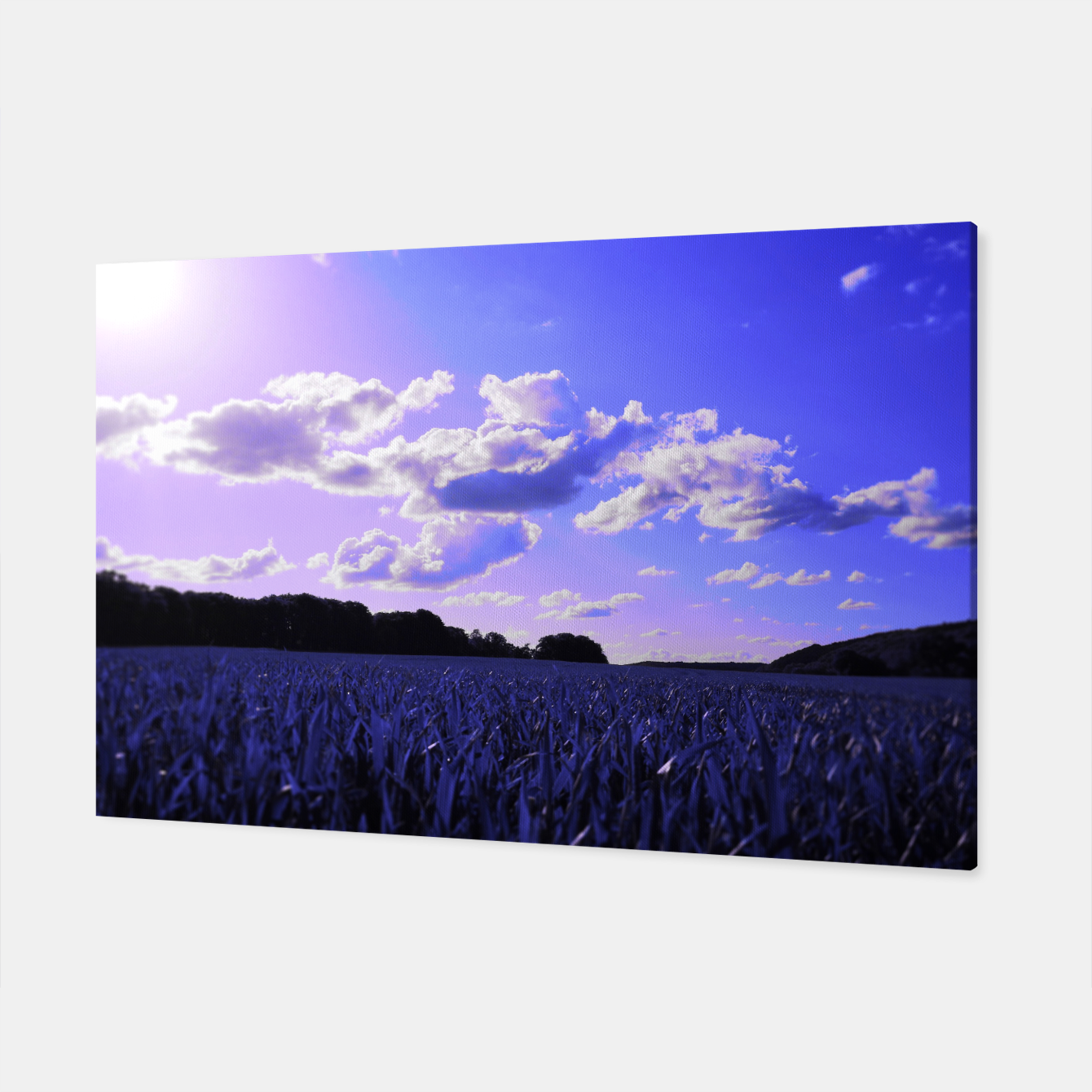 Image de meadow and clouds db Canvas - Live Heroes