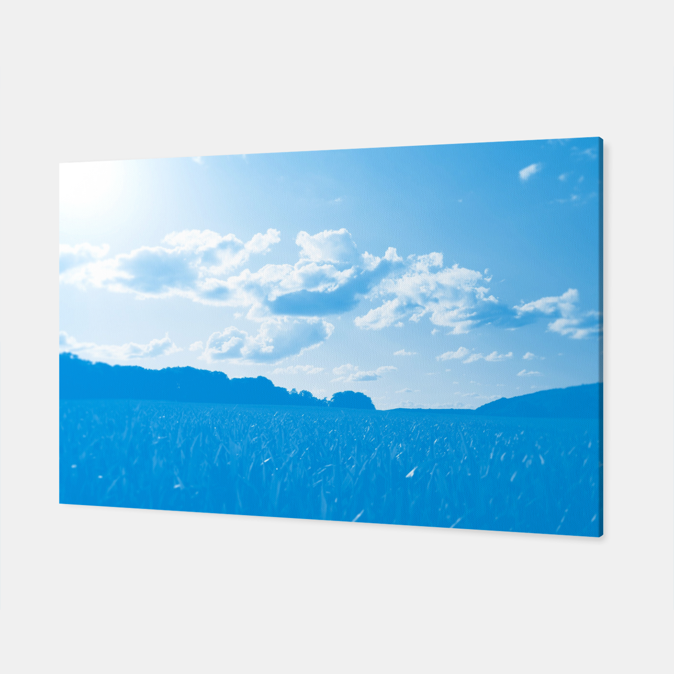 Image de meadow and clouds wb Canvas - Live Heroes