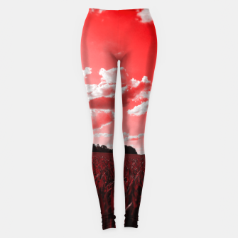 Thumbnail image of meadow and clouds dr Leggings, Live Heroes