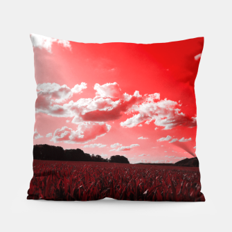 meadow and clouds dr Pillow miniature