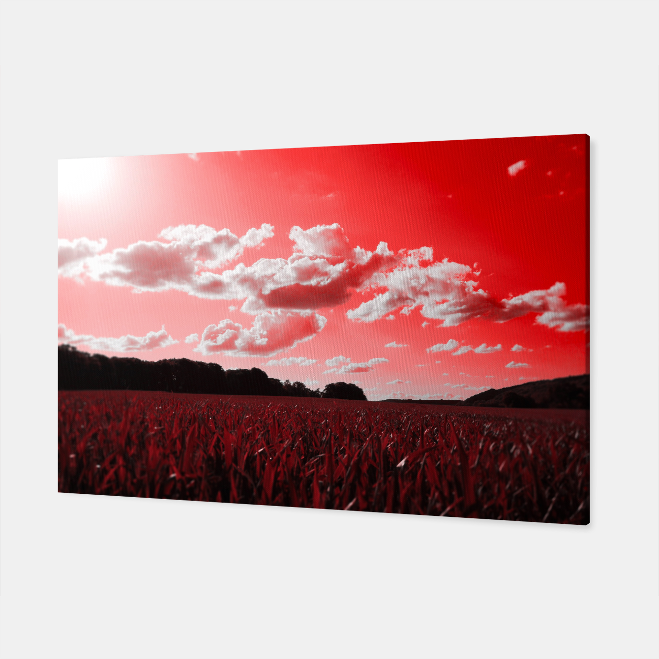 Image of meadow and clouds dr Canvas - Live Heroes