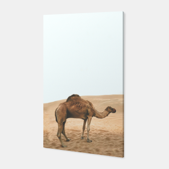 Thumbnail image of Camel. Canvas, Live Heroes