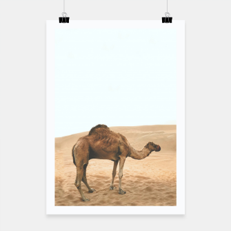 Thumbnail image of Camel. Plakat, Live Heroes