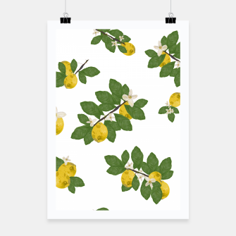 Thumbnail image of Lemon tree and lemon flowers pattern white background Poster, Live Heroes