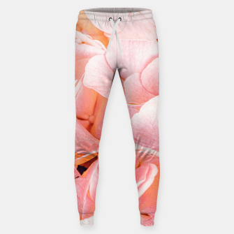 Thumbnail image of Blushing Sweatpants, Live Heroes