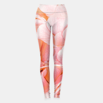 Thumbnail image of Blushing Leggings, Live Heroes
