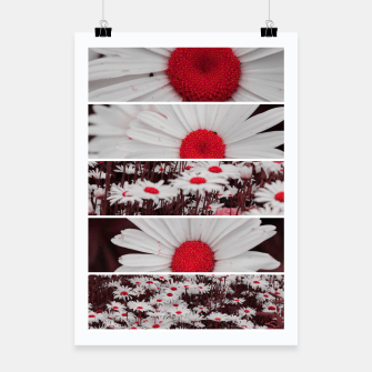 Thumbnail image of Collage Marguerites Affiche, Live Heroes