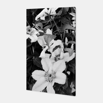 clematis 2 bw Canvas thumbnail image