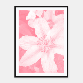 clematis 1 pw Framed poster thumbnail image