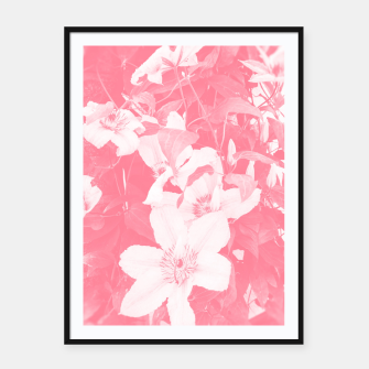 clematis 2 pw Framed poster thumbnail image