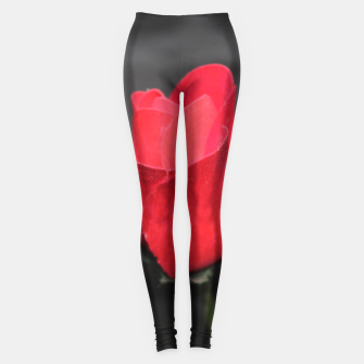 Photo Roses Rouge Leggings thumbnail image