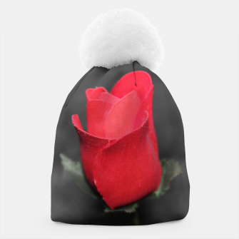Photo Roses Rouge Bonnet thumbnail image
