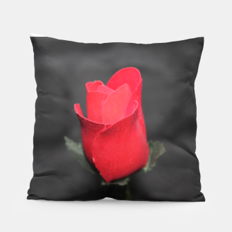 Thumbnail image of Photo Roses Rouge Coussin, Live Heroes