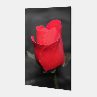 Photo Roses Rouge Toile thumbnail image