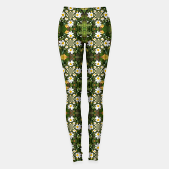 Miniaturka Magic Field Summer Grass - Chamomile Flower with Bug - Polarity #1 Leggings, Live Heroes
