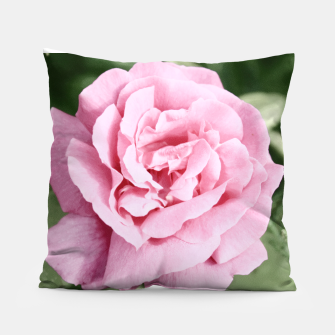 Thumbnail image of Photo Fleur Roses Coussin, Live Heroes