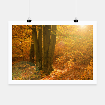 Thumbnail image of Sunny forest Poster, Live Heroes