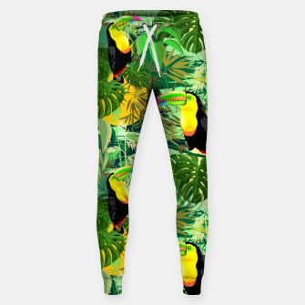Miniature de image de Toucan in Green Amazonia Rainforest  Sweatpants, Live Heroes
