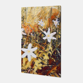 Thumbnail image of anemones Canvas, Live Heroes