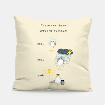 Thumbnail image of Three Types of Weather Pillow, Live Heroes