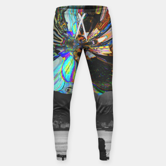 Thumbnail image of 073 Sweatpants, Live Heroes