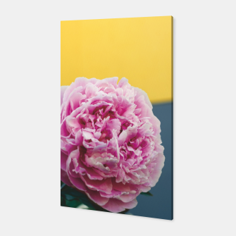 Thumbnail image of Peony Canvas, Live Heroes