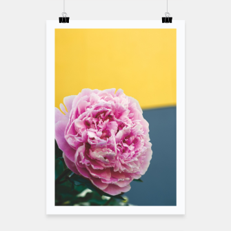 Miniatur Peony Poster, Live Heroes