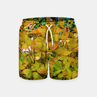 Miniature de image de Colored Nature Print Swim Shorts, Live Heroes