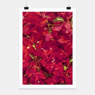 Thumbnail image of Red Flowers Pattern Photo Poster, Live Heroes