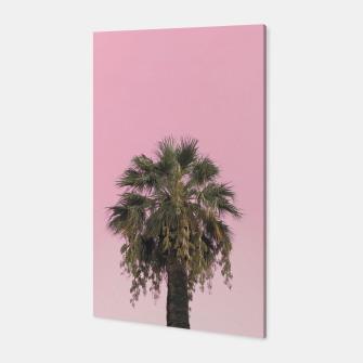 Palm tree and pink sky Canvas thumbnail image