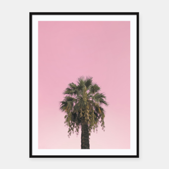 Palm tree and pink sky Framed poster thumbnail image