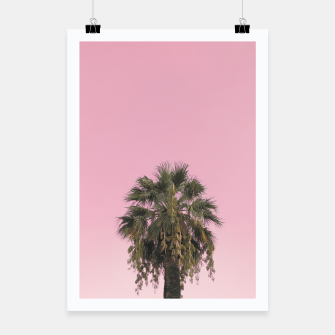 Palm tree and pink sky Poster thumbnail image
