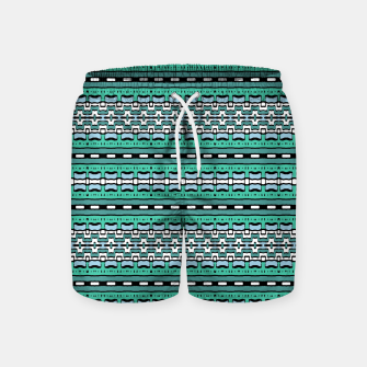 Aztec Striped Colorful Print Pattern Swim Shorts thumbnail image