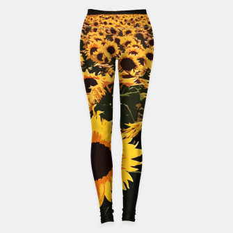 SunFlowers Leggings thumbnail image