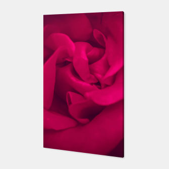 Thumbnail image of red rose Canvas, Live Heroes