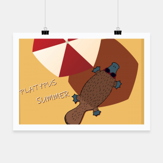 Thumbnail image of PLATYPUS SUMMER Poster, Live Heroes