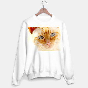 Cat with the blue eyes, cat face print  Sweater regular miniature