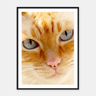 Cat with the blue eyes, cat face print  Framed poster miniature